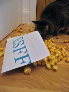 Edinburgh Short Film Festival at Hidden Door 2015