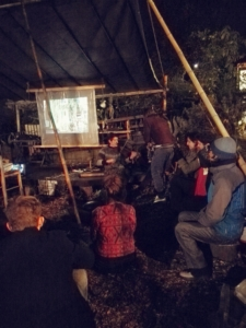 Edinburgh Short Film Festival's Garden Cinema, short film exhibition, international short film nights