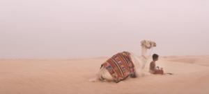 THE CAMEL BOY EDINBURGH SHORT FILM FESTIVAL